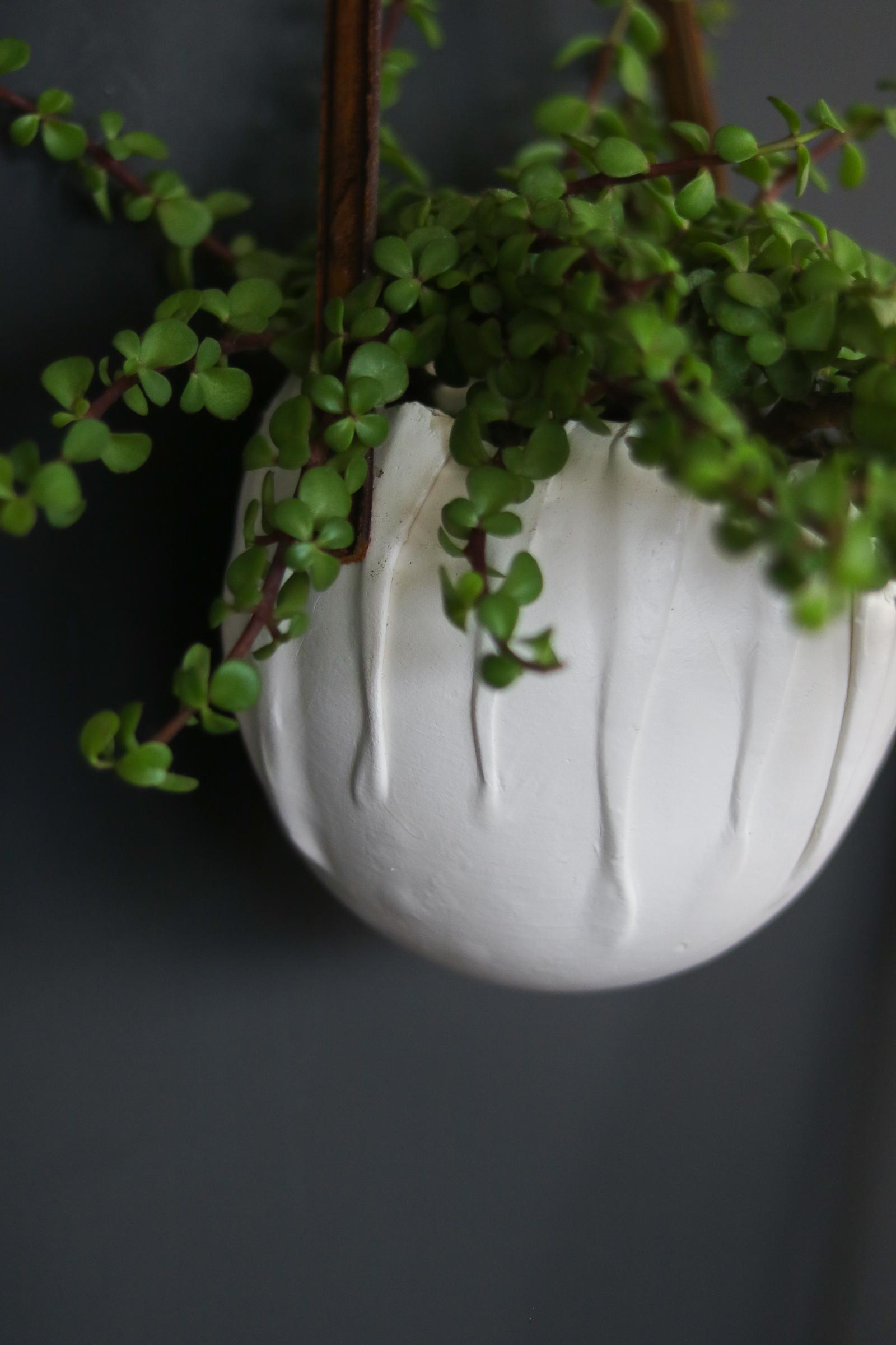 DIY wall pots