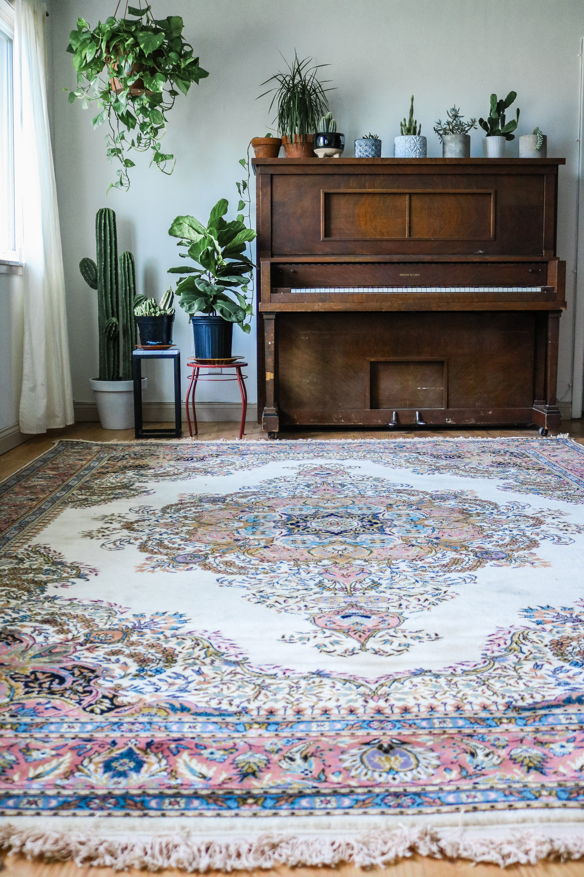 how to dye a rug