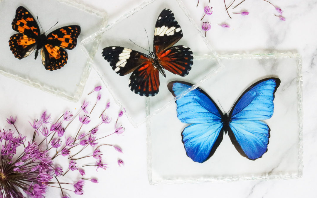 Pressed Faux Butterflies For Mother's Day