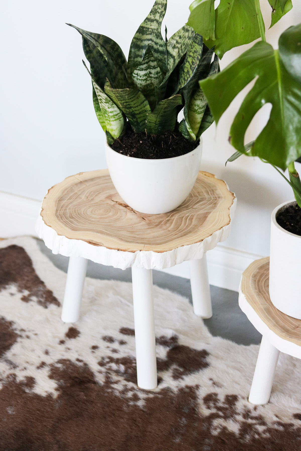 DIY Plant Stand from Wood By Lily Ardor