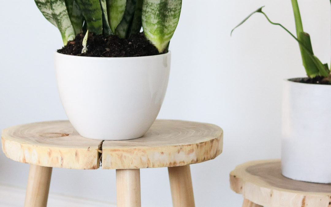 DIY Plant Stands from wood!