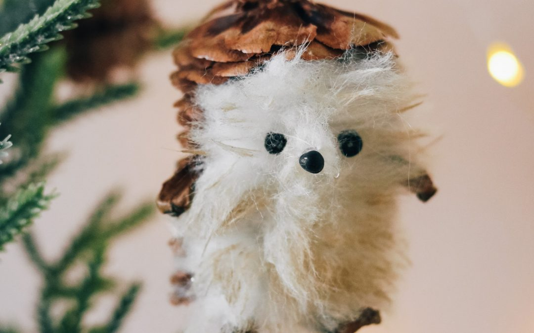 DIY Hedge Hog Ornament From Pinecones